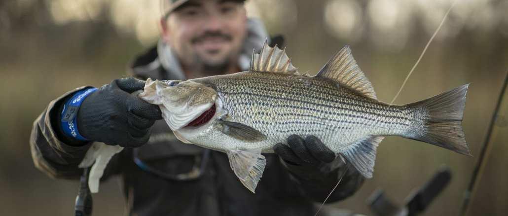 Winter Fishing Trips