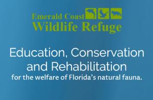 Guest Speaker Bill Anderson - Emerald Coast Wildlife Refuge @ Beach Community Bank | Navarre | Florida | United States