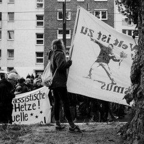 Blog-Anti-AfD-Demo-2926