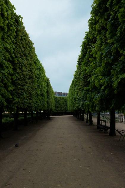 Paris-Beauty-4103C