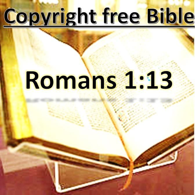 Rom 1:13