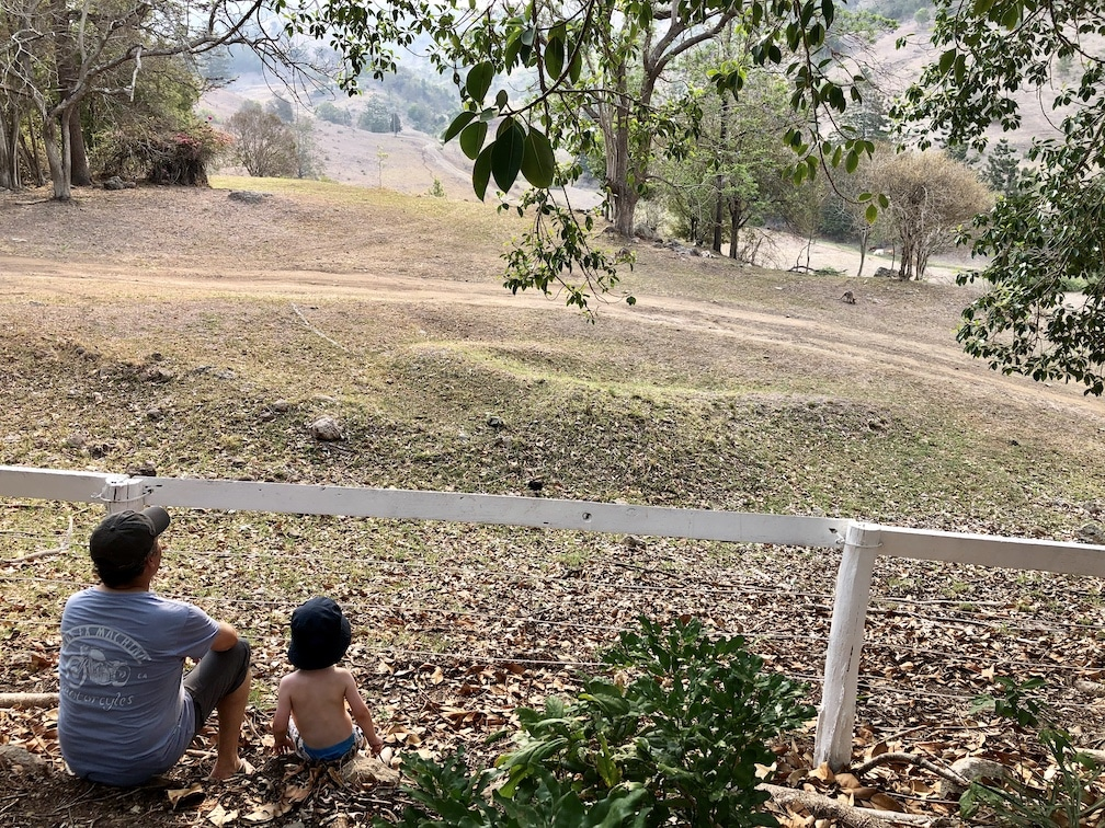 Man and child sitting in front of a fence looking at wallabies in the distance
