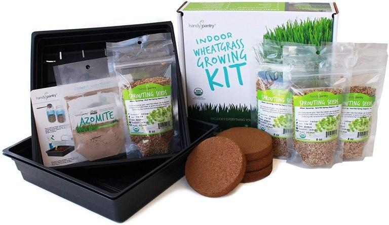 Wheatgrass Growing Starter Kit