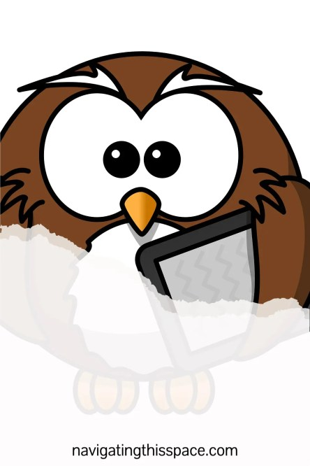 an illustrated owl with a tablet working on maintaining his self improvement habits