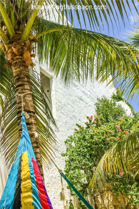 colorful hammock tied to a coconut tree