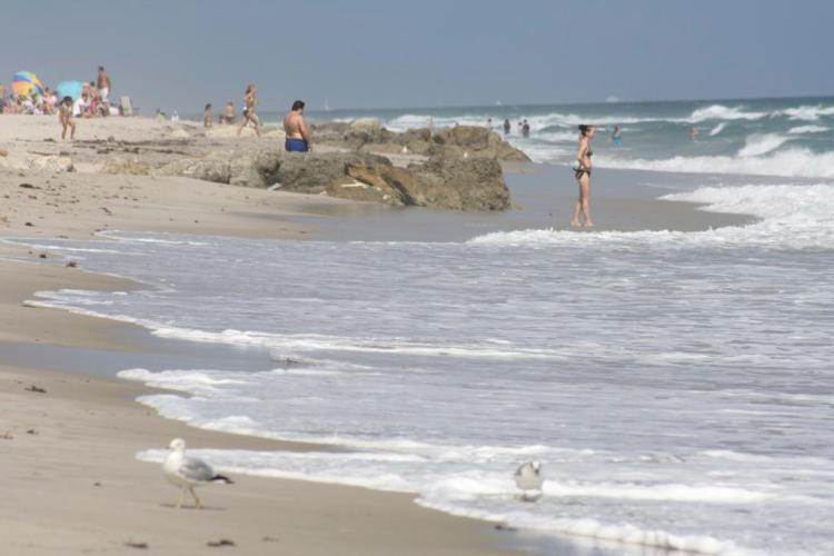 best beaches, palm beach