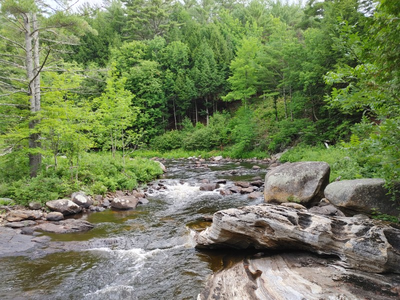 Trout Brook, natural stone bridge and caves.