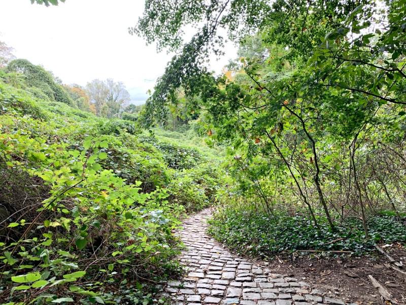 Welwyn Preserve cobblestone path