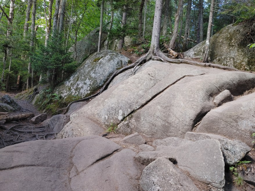 Hiking Bald Mountain, rocky section of the trail