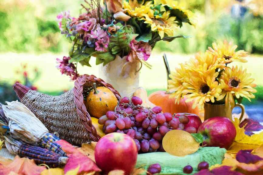 yellow sunflower and red apple fruits on green table, thanksgiving traditions