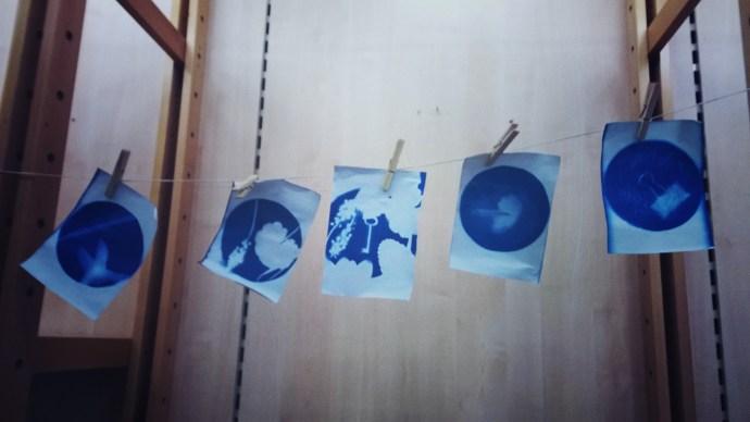 Mbro Winter Garden Print Day5