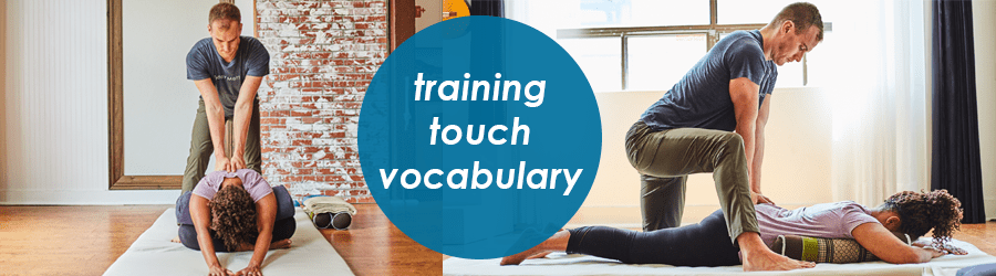 training touch vocabulary