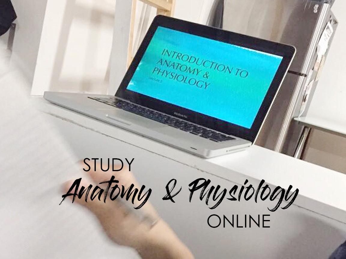 4×3 web homepage slider A&P online