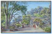 1878- Bridge at Tallital Bazaar, Nynee Tal. Painted by Marianne North in July 1878.