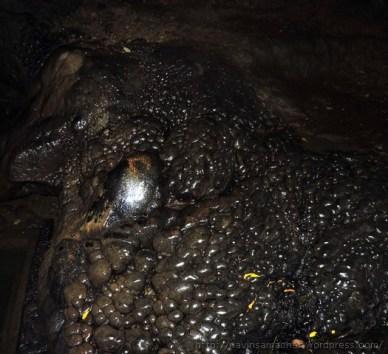 पातालभुवनेश्वर गुफा में राजा भगीरथ के पुरखे