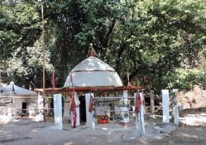 माता भद्रकाली मंदिर