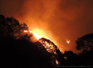 Forest Fire Khurpatal, Nainital on 28.04.2016