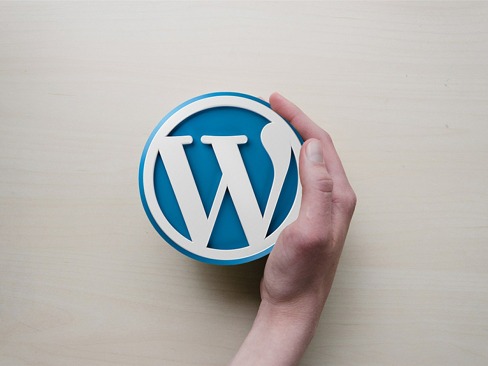 Learning WordPress from scratch