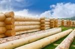 Подготовка древесины для строительства дома