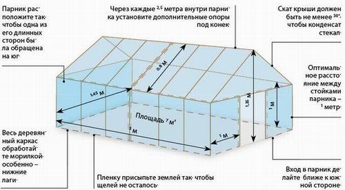 1404737428_stroitelstvo-teplicy1