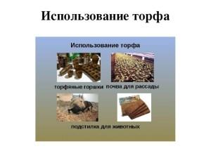 Торф, его виды и применение