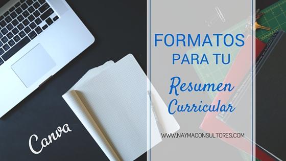 formatos para hacer un resumen curricular  u2013 nayma consultores