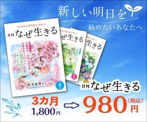 3か月おためし980円