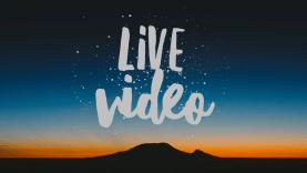 Live Video Link
