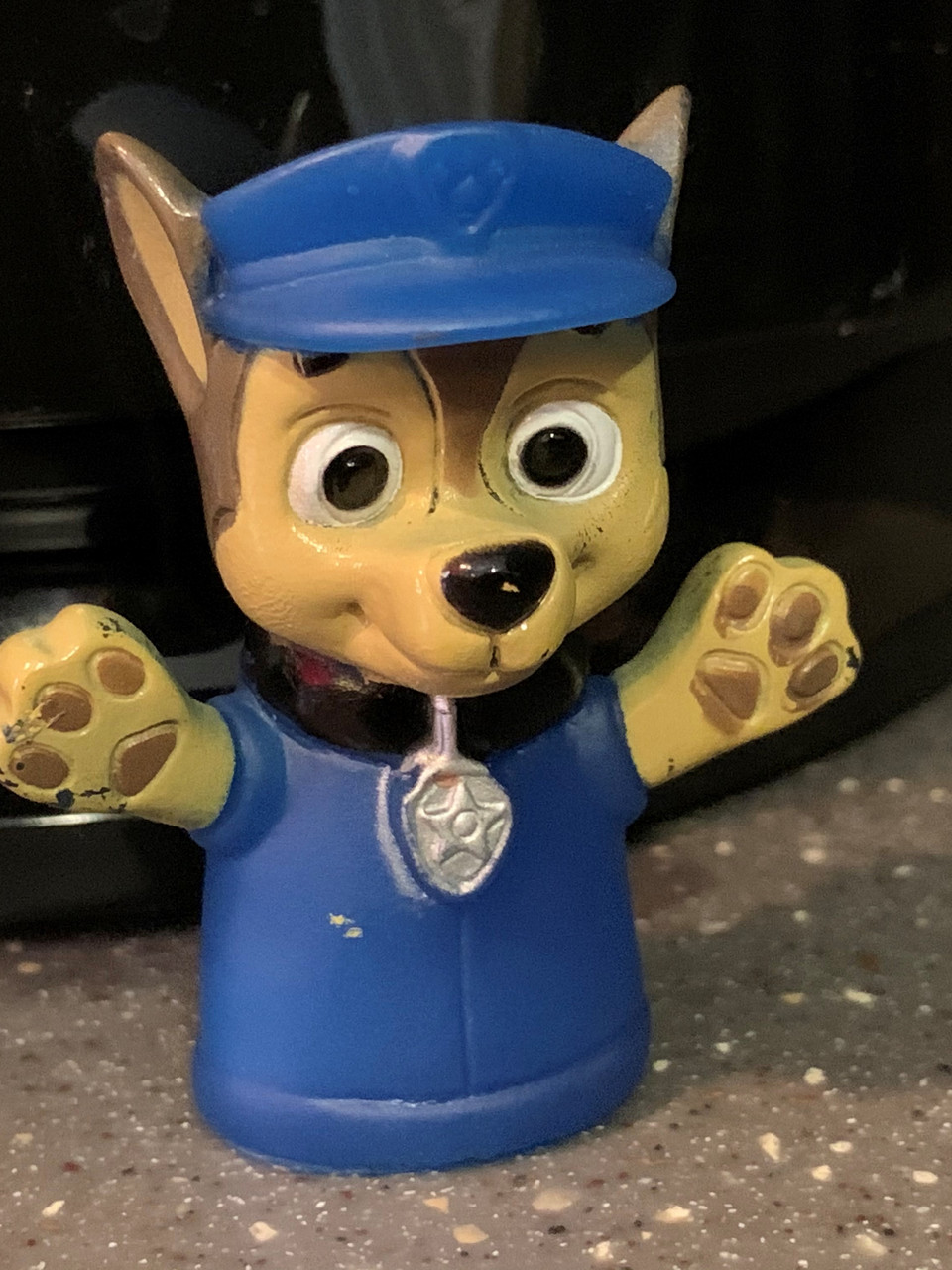 Popular Cartoon Paw Patrol Character Chase Facing Pressure From Activists Weyi