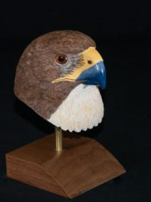 Red-tail Hawk bust