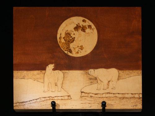 Night-time Polar Bears