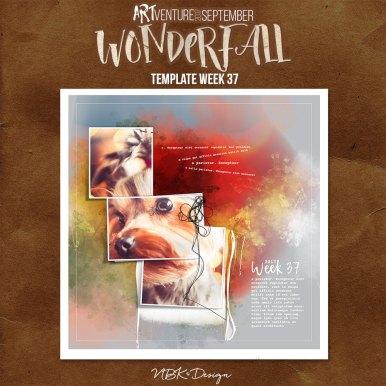 nbk-WONDERFALL-2017-TP-37