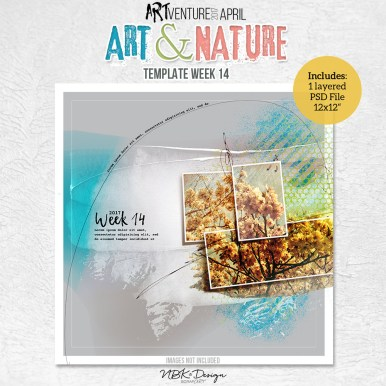 nbk-artANDnature-TP14