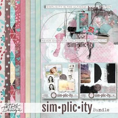 nbk-simplicity-bdl-800