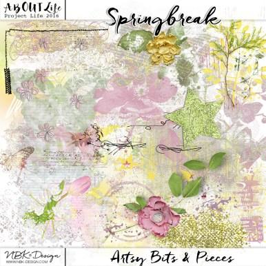 nbk-springbreak-ABP