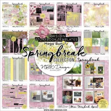 nbk-springbreak-BDL-storybook