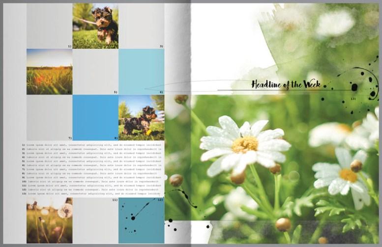 nbk-wildflowers-mini-storybook-02-03-800