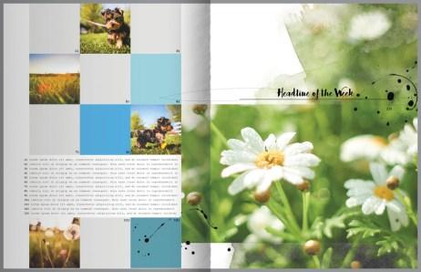 nbk-wildflowers-mini-storybook-02-03