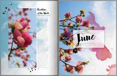 nbk-wildflowers-mini-storybook-10-11