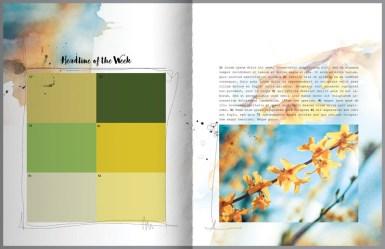 nbk-wildflowers-mini-storybook-10-112-800