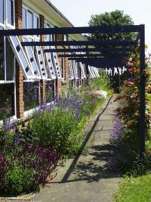 School- under the pergola and looking at the 'Nectar Bar'