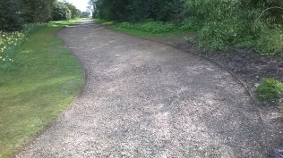 .. and a nearby path after the same treatment.