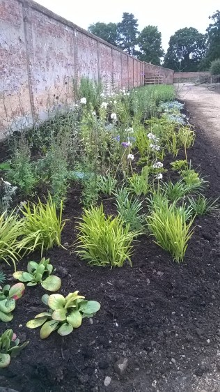 After mulching with some 'black gold'...