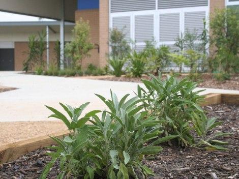 Learning Gardens - Oran Park Public School