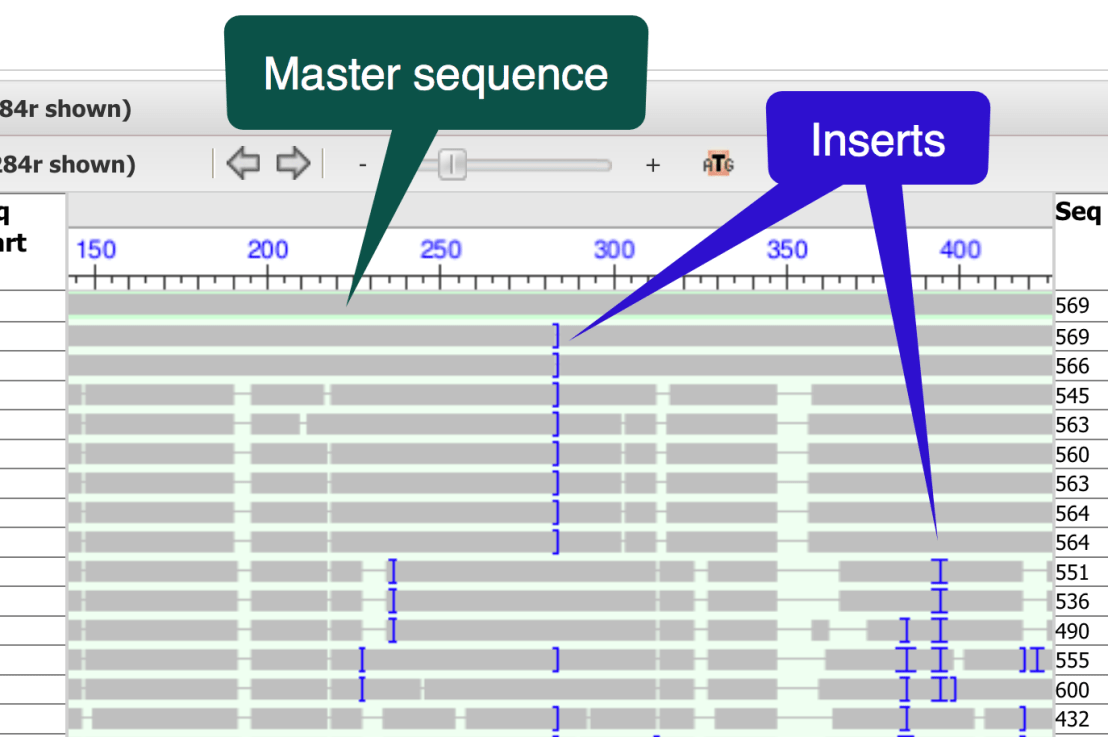Visualize and Interpret Alignment Data with the Multiple Sequence Alignment Viewer