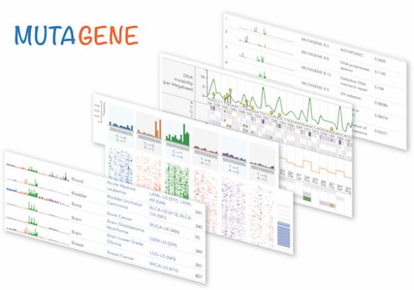 composite image showcasing mutagene's features