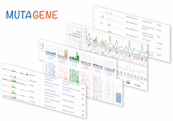 Explore and analyze mutagenic factors leading to tumors with MutaGene, a novel resource