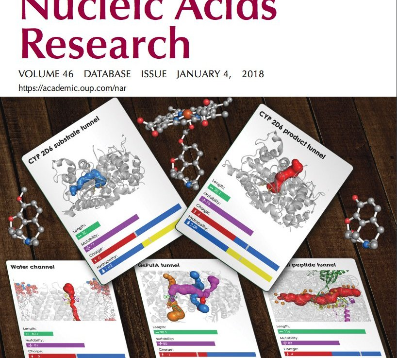 5 NCBI articles in 2018 Nucleic Acids Research database issue