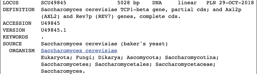 GenBank sample for Saccharomyces cerevisiae, baker's yeast