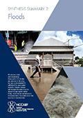 Synthesis Summary 2: Floods